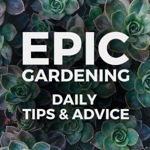 Epic Garden Podcast