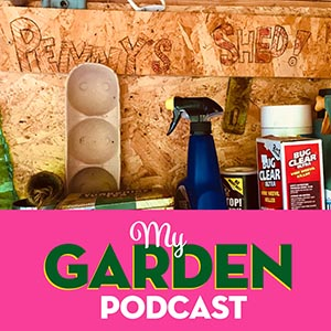 Gardening podcast shed