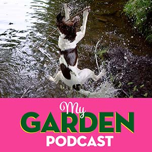 Gardening podcast with dogs