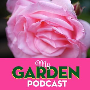 Gardening podcast greenfly
