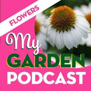 My Garden Podcast flowers